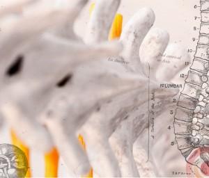 Chiropractor - back pain