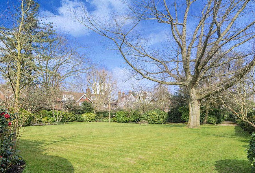 Elsworthy Road, Garden