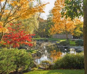 Kensington and Holland Park