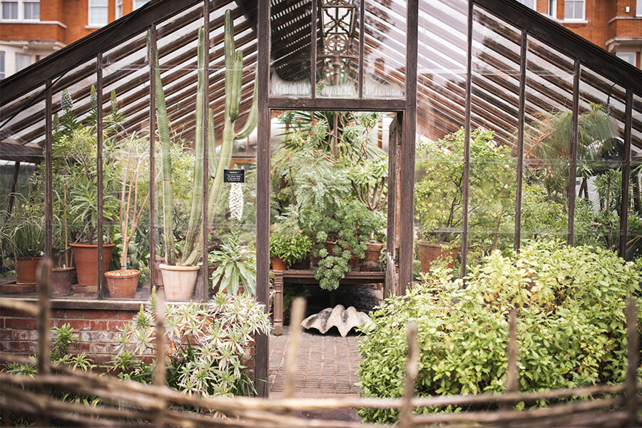 Chelsea physic Garden Greenhouse